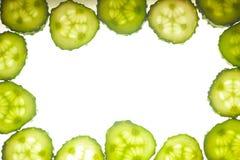 黄瓜在白色查出的圈子部分 库存照片