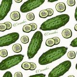 黄瓜手拉的传染媒介无缝的样式 免版税库存图片