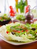 黄瓜新鲜的沙拉蕃茄蔬菜 库存照片
