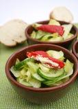 黄瓜新鲜的沙拉 图库摄影