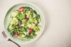 黄瓜新鲜的莴苣混合沙拉蕃茄蔬菜 图库摄影