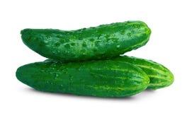 黄瓜绿色 免版税库存图片