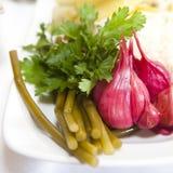 黄瓜腌制蕃茄蔬菜 图库摄影