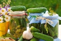 黄瓜被腌制的庭院瓶子 图库摄影
