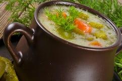 黄瓜被腌制的波兰汤 免版税库存照片