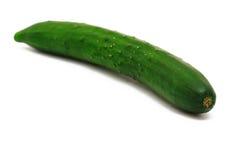 黄瓜 库存图片