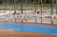 黄石公园,怀俄明,美国 库存照片