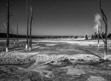 黄石国家公园火山的风景  库存图片