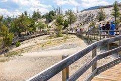 黄石国家公园,怀俄明,美国- 2017年7月17日:木板走道的游人马默斯斯普林斯大阳台的 黄石公园, 库存照片