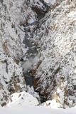 黄石的大峡谷 库存图片