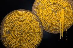 黄色从泰国的桑蚕软的茧 库存图片