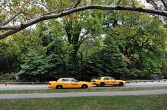 黄色出租车推进通过中央公园 库存图片