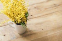 黄色含羞草分支在杯子的在委员会背景  免版税库存照片
