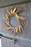 黄色和布朗秋天缠绕垂悬在一个木门 库存图片
