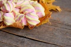 黄色和桃红色微型蛋白软糖在黄色秋叶和在与拷贝空间的葡萄酒木背景文本的 免版税库存照片