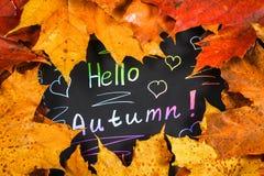 黄色和橙色秋天槭树框架在灰色黑暗的混凝土离开 有色的文本的黑色的盘子 题字是你好澳大利亚 免版税库存照片
