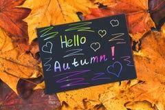 黄色和橙色秋天槭树框架在灰色黑暗的混凝土离开 有色的文本的黑色的盘子 题字是你好澳大利亚 库存图片