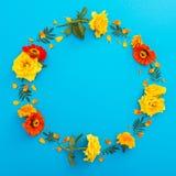 黄色和橙色花圆的花卉框架在蓝色背景的 平的位置,顶视图 背景细部图花卉向量 免版税库存照片
