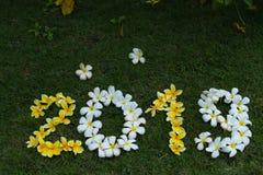 黄色和白花图在绿草 库存图片