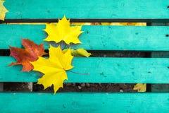 黄色和红槭在绿松石被绘的老长木凳离开在公园 免版税图库摄影