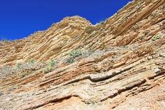 黄色和红色挥动的岩石分层堆积,大弯曲国家公园,美国 免版税库存图片