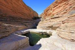 黄色和红色挥动的岩石分层堆积,大弯曲国家公园,美国 库存照片
