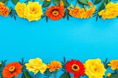 黄色和红色花花卉边界框架在蓝色背景的 平的位置,顶视图 背景细部图花卉向量 免版税库存图片
