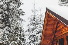 黄色客舱在森林里在冬天 图库摄影