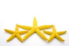 黄色星形 免版税库存照片