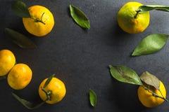 黄色普通话框架与叶子的在灰色背景 免版税图库摄影