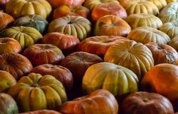 黄色有肋骨南瓜背景 葡萄酒橙色果子仿造土气基础秋季季节 免版税图库摄影
