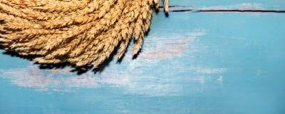 黄色未加工的麦子花圈 免版税库存照片