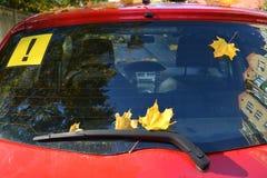 黄色枫叶和贴纸与惊叹号在汽车的后方屏幕上 库存图片