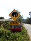 黄色标志是仔细的大象 库存照片
