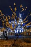 黄色树在晚上 图库摄影