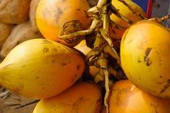 黄色椰子特写镜头出售的在街道上 库存图片