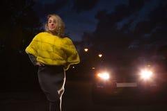 黄色毛皮夹克 库存照片