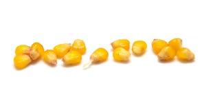 黄色玉米谷物 库存照片
