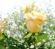 黄色玫瑰和白色小的花美丽的花束有迷离背景 图库摄影