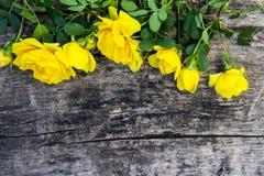 黄色玫瑰在与拷贝空间的土气木背景开花 库存图片