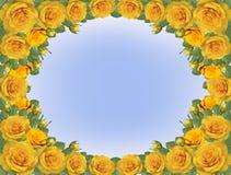 黄色玫瑰框架  免版税库存图片