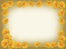 黄色玫瑰框架  库存照片