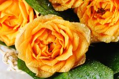 黄色玫瑰花束。 库存图片