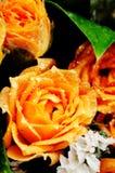 黄色玫瑰花束。 库存照片