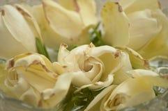 黄色玫瑰装饰花束  免版税图库摄影