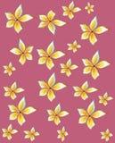 黄色番木瓜花的样式在桃红色背景的 皇族释放例证
