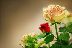 黄色的玫瑰花束红色和 库存图片