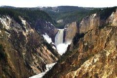 黄色石国立公园大峡谷  免版税库存照片
