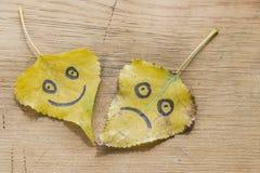 黄色离开与一张愉快和哀伤的面孔的图片 免版税库存图片