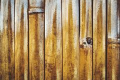 黄色竹子墙壁的纹理  免版税图库摄影